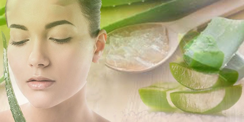 Alovera - Homemade beauty tips for glowing skin in hindi