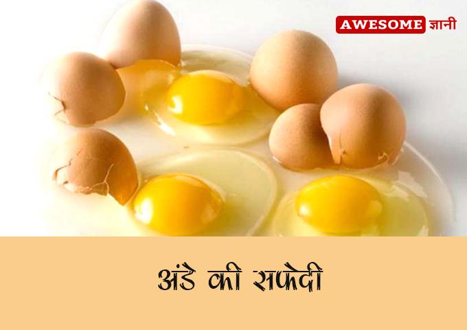 Egg Yolk - Hair Fall Solution in Hindi