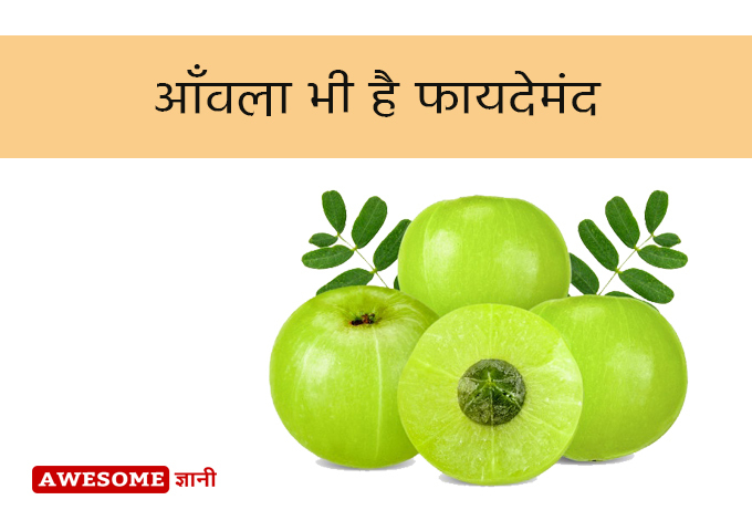 Indian gooseberry is also beneficial - Hair Fall Treatment at home in Hindi