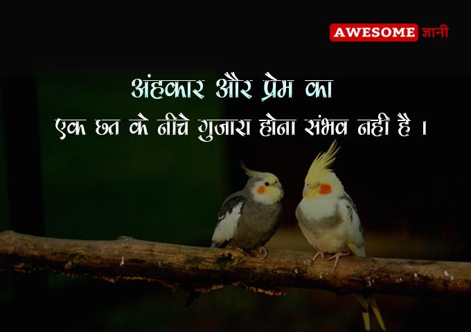 Ego Status in Hindi