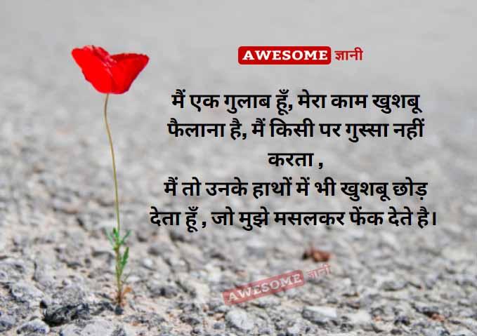 Shayari on Rose in Hindi
